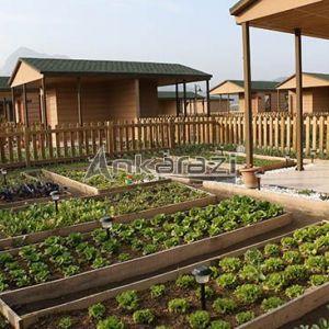 Hobi Bahçelerine Yeni Düzenleme...