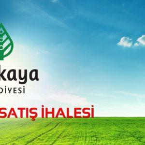 Bağlıca – Ankara Üniversitesi Kök Hücre Hastanesi Son Durum…